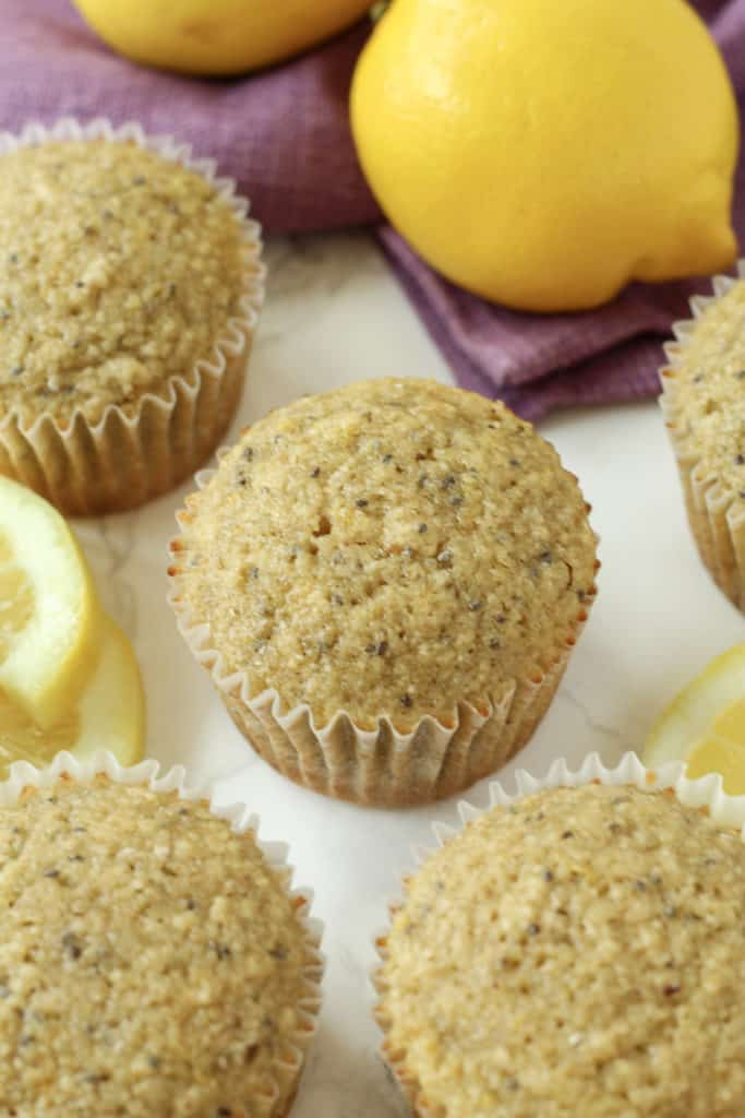 one Lemon Chia Oat Muffin close up with other muffins and lemon slices around