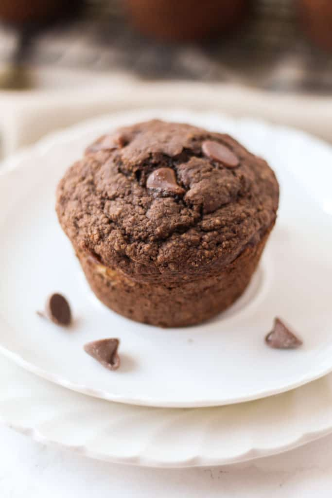 one Double Chocolate Oat Muffin on a plate with a couple chocolate chips sprinkled around